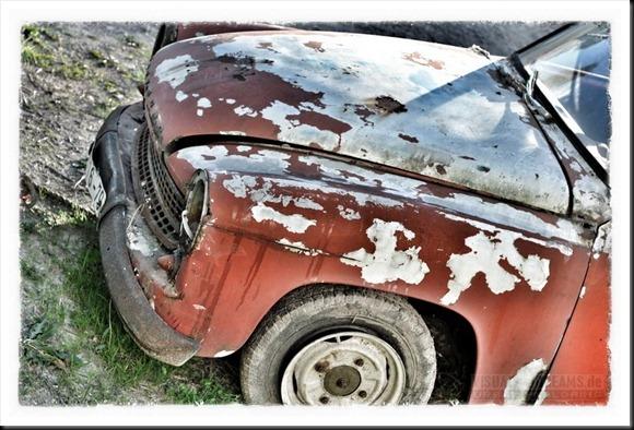 rottencars800-021